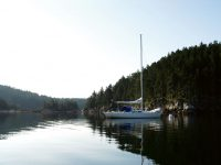 Discovering Smith Cove – again