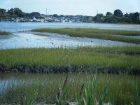 May: Southern tip of Snug Harbor