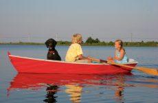 Arguments for a proper rowboat