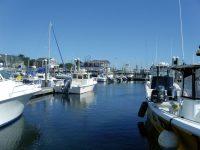 September: Point Judith, Rhode Island