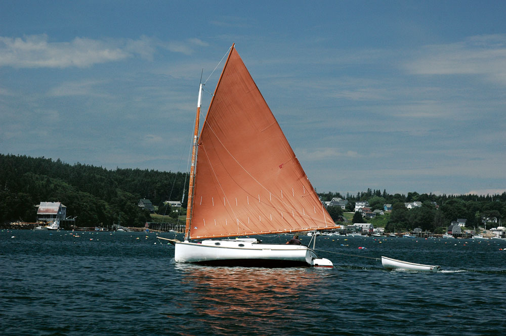 Curmudgeon seeks catboat for company and the occasional adventure | Points  East Magazine