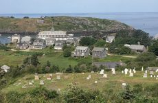 The view overlooking The Island Inn, on Monhegan, is lovely (main photo); seals (below, at The Goslings) are a common sight; and a dinghy dock in Belfast (bottom; Ilene with white hull and dark sail cover).