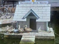 Photo by Christopher BirchThe duck house near Birch Marine, from which a valuable lesson emerged.