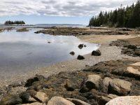 Saddleback Island