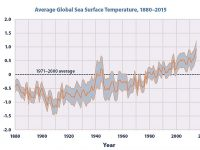 """It is also noted that the National Environmental Education Foundation (NEEF), in Washington, D.C., states that """". . . the average sea-surface temperature has been consistently higher during the past three decades than at any other time since reliable records began in 1880."""""""
