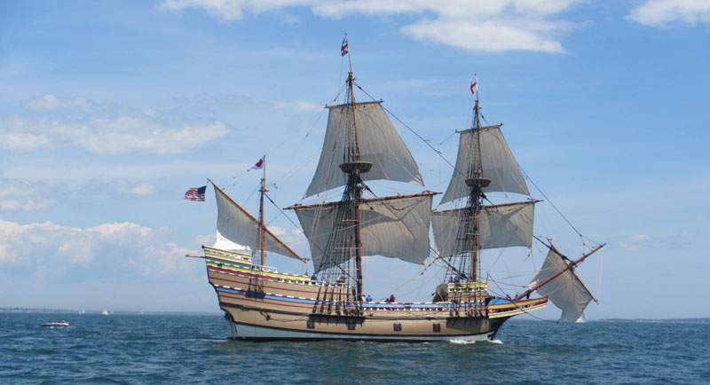 A Mayflower sighting and some last-minute fishing