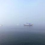 Casco Bay fog daze
