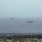 Frenchboro in the fog